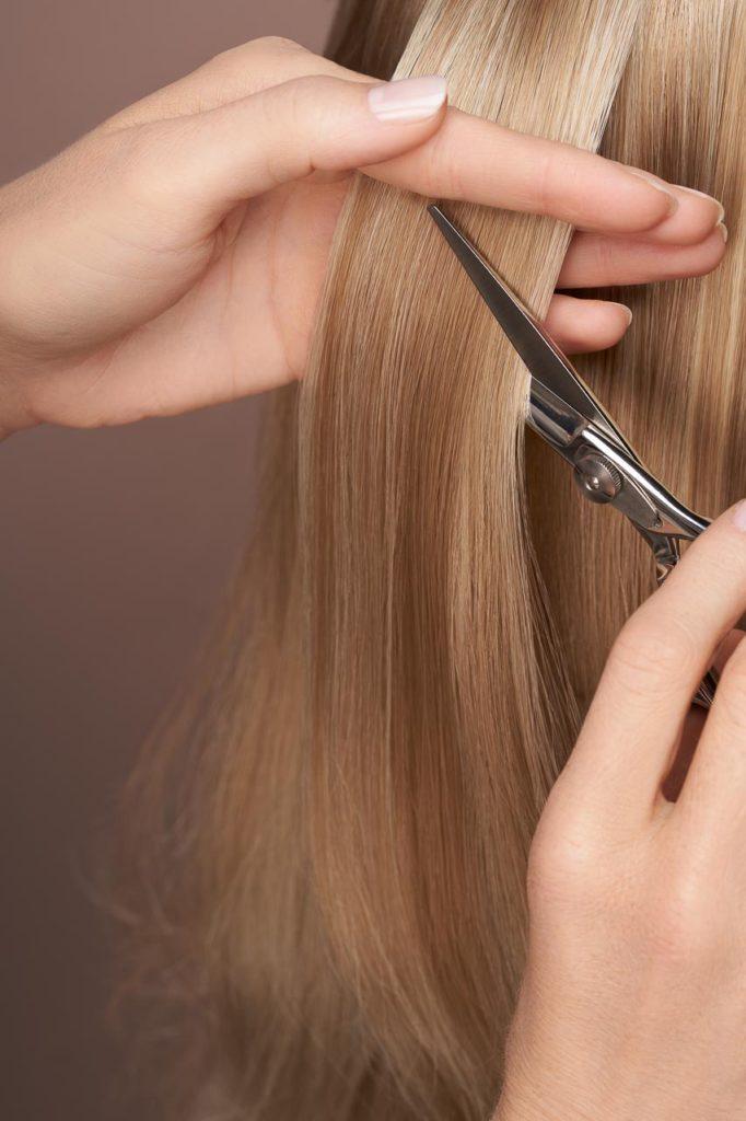 Segara Photos 15 682x1024, Hair Haus - Premium Hair Salon